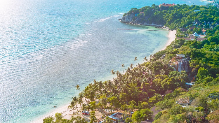 Cars And Coffee Palm Beach Help Energy Drink