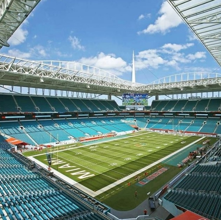 Miami Dolphins Love Help Energy Drink