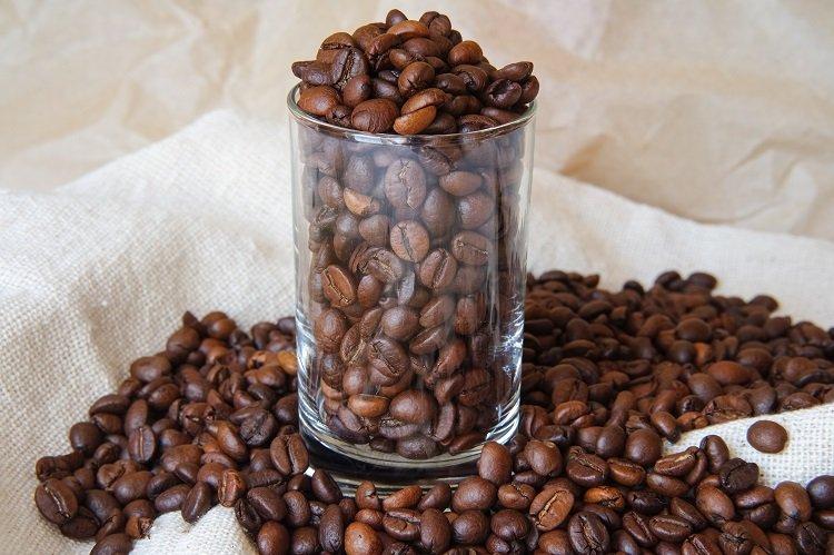 Modafinil and Caffeine