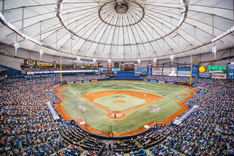 Tampa Rays Baseball Help Energy Drink
