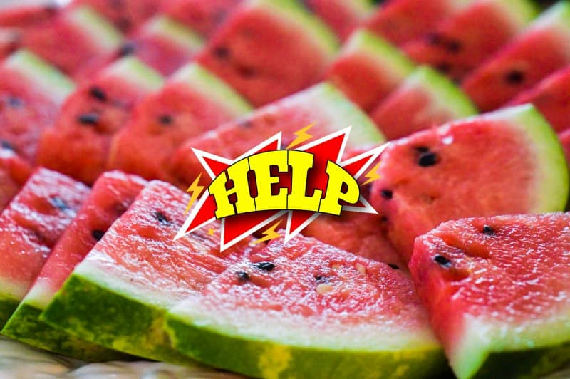 watermelon benefits and recipes